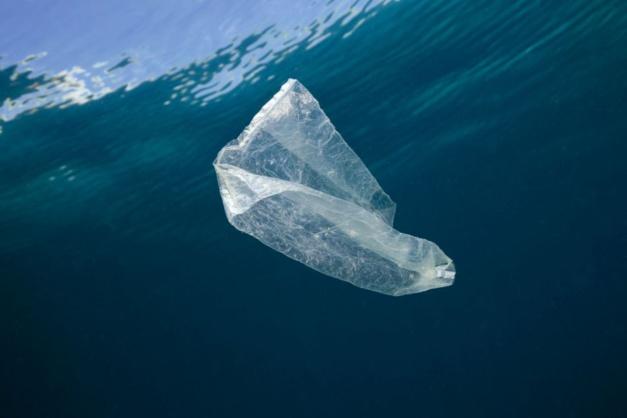 Breitling s'associe à Ocean Conservancy pour la sauvegarde des mers