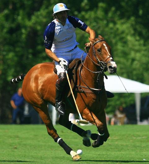 Jaeger-LeCoultre : novembre 2010, une nouvelle saison de polo en Argentine