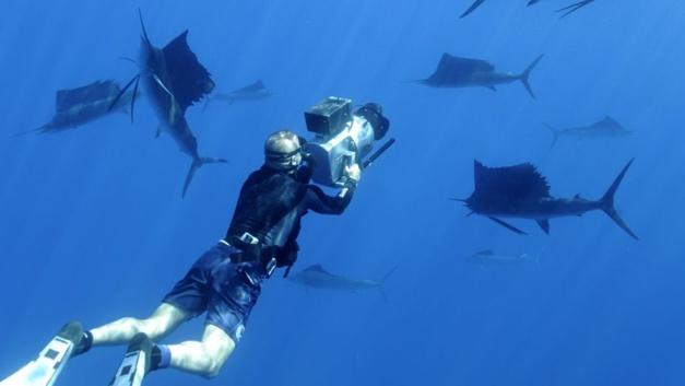 Omega : un regard unique sur nos océans avec Planète Océan, le film de Yann Arthus-Bertrand