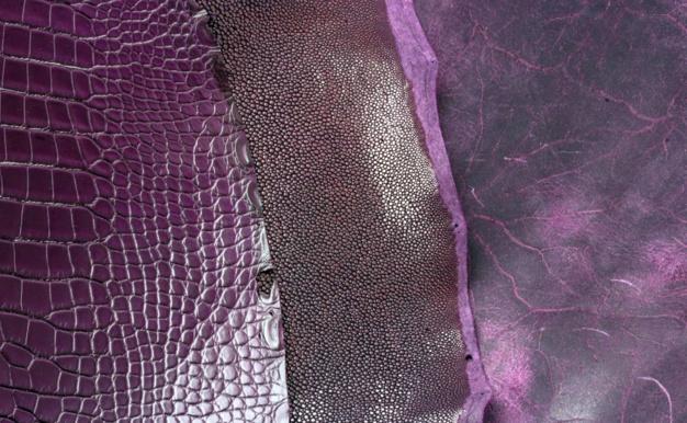 Violet ABP Concept
