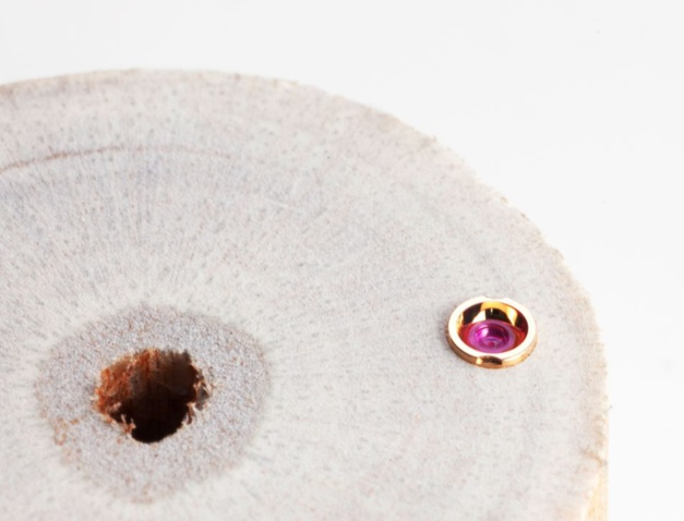 Ici en détail : les minuscules chatons en or sont pressés dans de la moelle de sureau pour être polis et frottés sur du papier de verre fin. Celui-ci a une taille de grain de cinq millièmes de millimètre.
