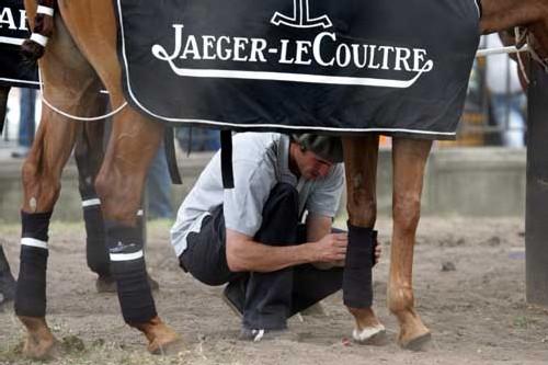 Polo : l'équipe La Dolfina Jaeger-LeCoultre remporte le 114e Open d'Argentine
