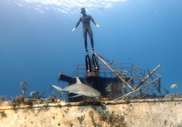Hamilton Khaki Navy Frogman : une imposante plongeuse