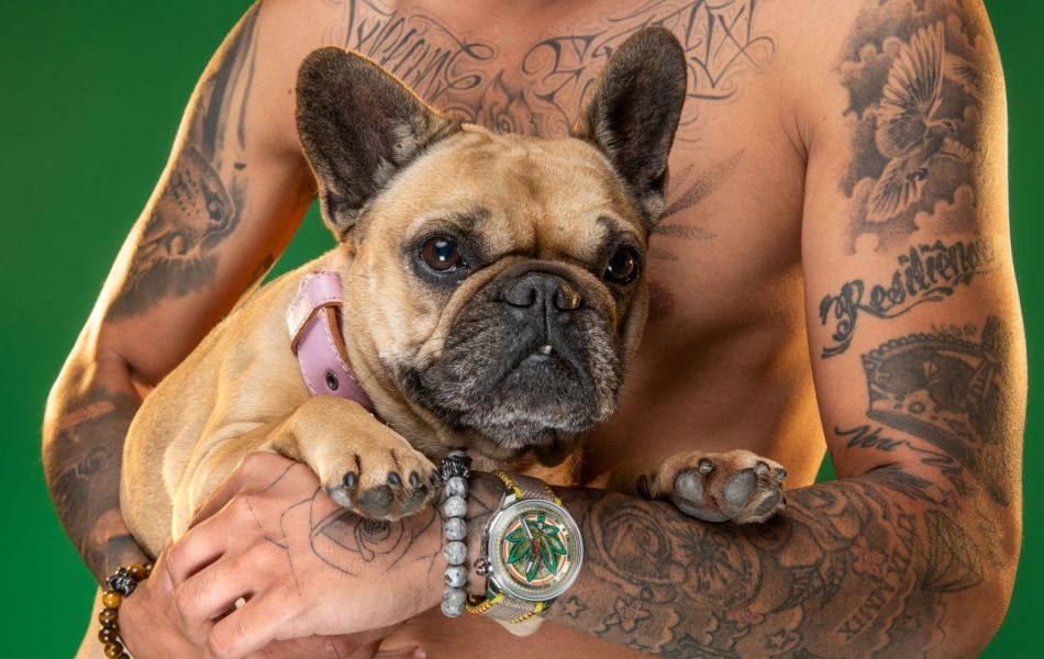 Bomberg BB01 Automatic Cure the BullDog : à l'heure relax