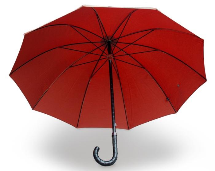 ABP : des parapluies et des cannes gainés d'alligator