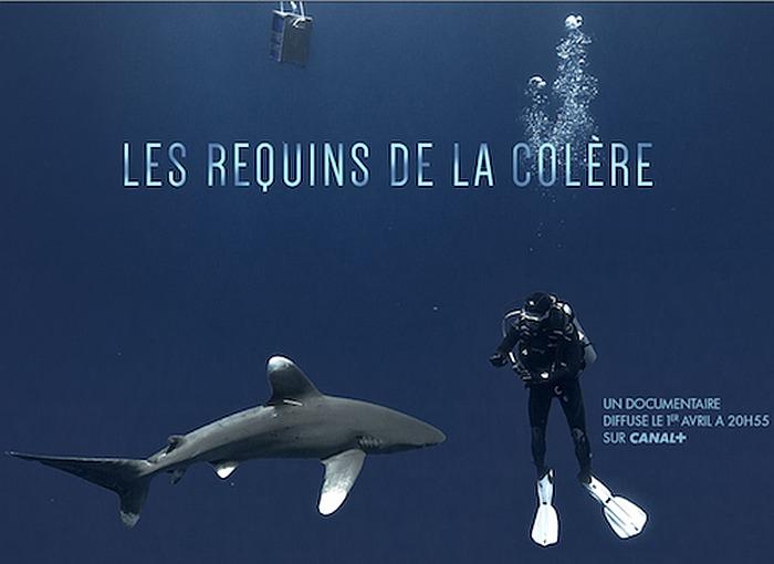 """Oris partenaire de Jérôme Delafosse dans le reportage """"Les Requins de la colère"""""""