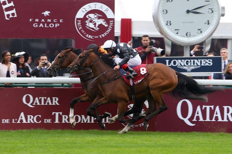 Longines et le Qatar Prix de l'Arc de Triomphe : une journée aux courses