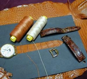 L'alligator et le crocodile : ce qui les distingue, la chronique du bracelet-montre d'ABP