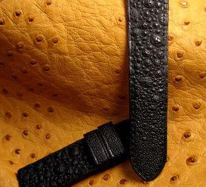 Deux cuirs originaux : le crapaud et la grenouille, la chronique du bracelet-montre d'ABP
