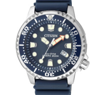 Templus reprend la distribution de Citizen France