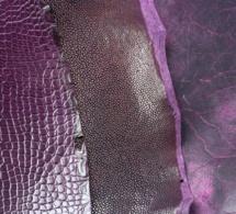 Violet : la grande tendance couleur de l'été vue par ABP Concept